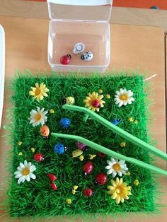 Cute fine motor work for spring! Transferring small objects with tweezers or tongs. Plus lots more ideas for sensory bins. Motor Skills Activities, Montessori Activities, Learning Activities, Preschool Activities, Montessori Materials, Materials Science, Outdoor Activities, Finger Gym, Montessori Practical Life