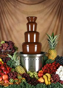 Chocolate Fondue sounds so good right now.