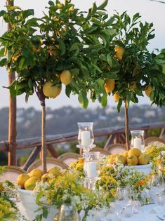 lemon themed wedding in capri Wedding Themes, Wedding Decorations, Table Decorations, Wedding Locations, Wedding Signs, Wedding Ideas, Lemon Centerpieces, Lemon Centerpiece Wedding, Lemon Party