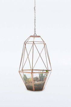 I can't tell you exactly in my home this would go, but I can tell you I want it. It's the Urban Grow Hanging Cooper Cocoon Terrarium from Urban Outfitters. A steal at On the list! Urban Outfitters, Copper Rose, Rose Gold, Indoor Plant Pots, Plant Growth, Hanging Planters, Hanging Terrarium, Garden Gifts, Home Gifts