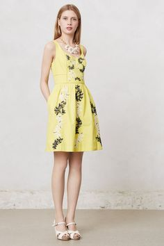 Embroidered Plume Dress - Anthropologie