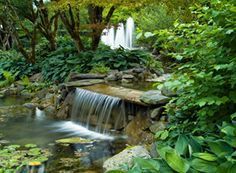 Minter Gardens....get there while you can! It's closing in October...