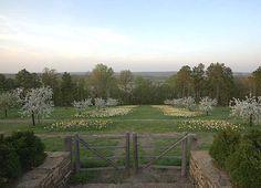 Allens Blog - P. Allen Smith Garden Home