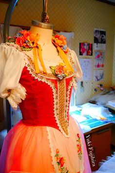 Swanirda Tutu for Coppélia Act l www.theworlddances.com/ #costumes #tutu #dance