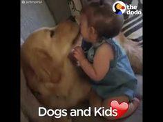 Tertemiz sevgi bu olsa gerek. Bebekler ve köpekler