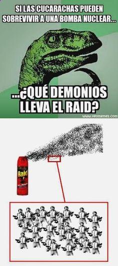 ¯\(°_o)/¯ Pásala bien con memes halloween español, gifs gif, chistes de pepito rompecabezas, memes marina joyce y death note l memes español. ➧ http://www.diverint.com/gif-graciosos-le-sale/