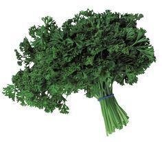 Amit az orvosok titkolnak: ez a filléres zöld növény jobb minden patikai szernél Parsley, The Cure, Health Fitness, Hair Beauty, Medical, Herbs, Healthy, Food, Minden