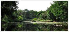 Lago Jardin Botanico Medellin Colombia