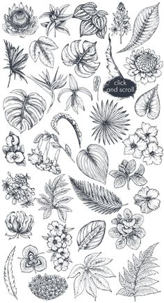 The product contains a large vector collection of hand-drawn tropical design elements. Tropisches Tattoo, Cuff Tattoo, Leaf Tattoos, Sleeve Tattoos, Arrow Tattoos, Tiny Tattoo, Word Tattoos, Tattoo Flash, Manga Tattoo