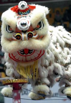 JAPAN.   See the traditional dragon dances, foods and culture.