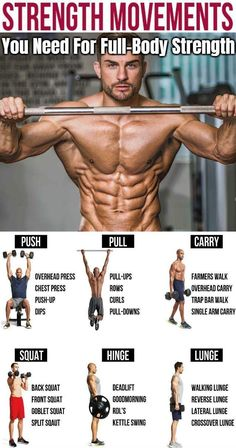 In order to build quality muscle and bring about major change to your physique and performance, you have to have a game plan that will produce satisfying results. For many bodybuilders this means. Exercise Fitness, Health And Fitness Tips, Muscle Fitness, Insanity Fitness, Health Diet, Fitness Diet, Trainer Fitness, Muscle Food, Daily Exercise