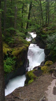 Glacier Park, Montana Glacier Park, Enchanted, Montana, Beautiful Places, Waterfall, Landscapes, World, Heart, Travel