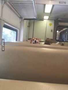 Girl on this train was givin' me eyes the whole ride