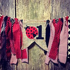 Ladybug Birthday High Chair Highchair Banner Party Photo Prop Bunting Backdrop First Birthday Fabric Garland by RockyTopCharm on Etsy Picnic Birthday, First Birthday Parties, First Birthdays, Birthday Ideas, Ladybug Picnic, Ladybug Party, Ladybug Decor, Ladybug Cupcakes, Snowman Cupcakes