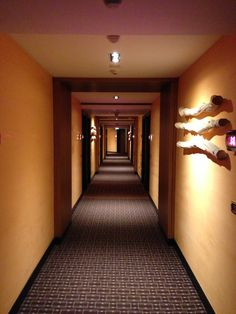 Hotel corridor - Radisson Blu Media City @ Dubai