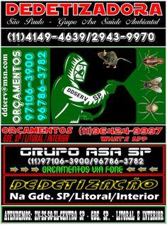 Dedetizadora Zona Leste SP - Guarulhos e Região ZL: Dedetização Zona Leste:(11)4149.4639/2943.9970/993...