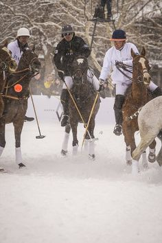 Aspen Polo | winter | snow | polo | aspen | Polo Classic | Colorado