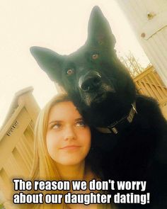 Wicked Training Your German Shepherd Dog Ideas. Mind Blowing Training Your German Shepherd Dog Ideas. Black German Shepherd Dog, German Shepherd Memes, German Shepherd Puppies, German Shepherds, Funny Dog Memes, Funny Animal Memes, Cute Funny Animals, Funny Dogs, I Love Dogs