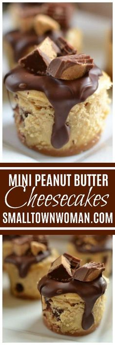 Peanut Butter and Chocoalte mini cheesecakes Mini Desserts, Cookie Desserts, Christmas Desserts, Just Desserts, Dessert Recipes, Small Desserts, French Desserts, Holiday Meals, Sweet Desserts