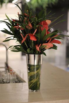 Arranjo de flores: Anturio vermelho