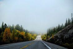Green Road I Curves I Sun I No Traffic I Relax and Drive I Adventure I Nature I Rocks I Fog  I