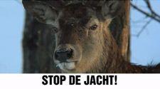 Stop de jacht!  In Nederland worden jaarlijks duizenden dieren voor het plezier doodgeschoten. Jij kan dat stoppen: op 12 september. https://www.partijvoordedieren.nl/video?v=zbW4pozbGcw