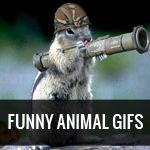 @Tina Gonzalez VanDeusen & @Margaret Kelly.... LOOK.... He's standing his ground from those damn Duck / squirrel hunters!!! lmao