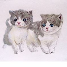 Custom couple kittens portrait Pet couple portrait. by deodea, $40.00