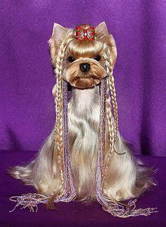 Yep yorkies loves braids