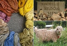 Downhome Fibers naturally dyed hand spun yarn, the sign for the Kim and Brother's ranch, one of their angora goats