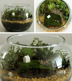 tiny village in terrarium