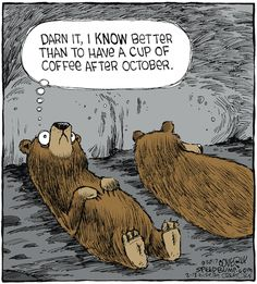 Animals coffee funny funny sayings picture pictures. hibernation - Animals coffee funny funny sayings picture pictures. Coffee Humor, Coffee Quotes, Funny Coffee, Beer Quotes, Funny Cartoons, Funny Jokes, Funny Sayings, Coffee Is Life, Coffee Coffee
