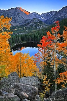 7 beautiful lakes - This is Bear Lake, Rocky Mountain National Park, Colorado. Places To Travel, Places To See, Travel Destinations, Beautiful World, Beautiful Places, Photos Voyages, Rocky Mountain National Park, National Forest, Beautiful Landscapes