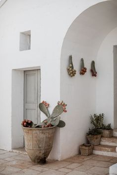 Home Cleaning 509891989060890769 - Masseria_Potenti_Wedding_Puglia_Southern_Italy_by_Lilly_Red_Creative Source by JulieGMB Garden Deco, Cacti Garden, Exterior Design, Interior And Exterior, Home Interior Design, Interior Decorating, Decoration Hall, Decorations, Puglia Italia
