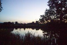 Stunning evening reflection at a Wildlife pond off Lemoine Street in Belleville Ontario