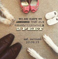 Pregnancy announcement with our dogs