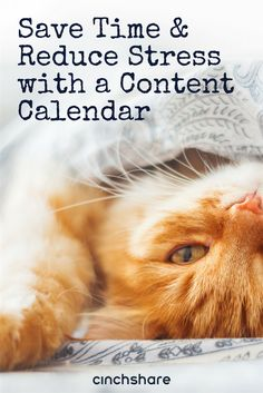 If you haven't gotten around to creating your content calendar for the new year, now is the time and we're here to help!