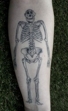 """My only problem with this """"Lucy"""" tattoo is that it is a merging of several fossils instead of just the Lucy remains."""