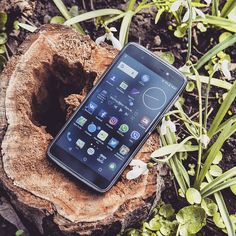 """#inst10 #ReGram @yourblackcat777: Бывает находишь такой сервис о котором хочется рассказать друзьям. С магазином BlackBerry.ua я дружу уже несколько лет но в этот раз желание сказать """"спасибо"""" особенно сильное. Спасибо за вашу чёткую удобную продуманную работу. Не поленилась сьездить в Киев чтобы посетить ваш магазин)) #Blackberry #blackberryua #bb #dtek50 #BlackberryClubs  #BlackBerryClubs #BlackBerryPhotos #BBer #RIM #QWERTY #Keyboard #OldBlackBerry #NewBlackBerry #TCL"""