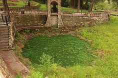 The Present-Radium Springs, Radium Springs Gardens & Historic Site, Albany, Dougherty County, Georgia 1 by Alan Cressler, via Flickr