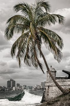 Photograph Habaneciendo, Cuba by Pepe Rey on 500px