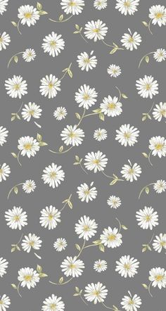Wallpaper Nette Blumentapete - # süß Choosing A Shower Enclosure Article Body: One of Daisy Wallpaper, Cute Patterns Wallpaper, Iphone Wallpaper Vsco, Flower Phone Wallpaper, Homescreen Wallpaper, Aesthetic Pastel Wallpaper, Iphone Background Wallpaper, Trendy Wallpaper, Cartoon Wallpaper