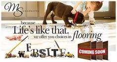 Learn how to protect your Hardwood Floors from pets!