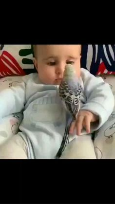 Cute Baby Twins, Cute Baby Boy Images, Cute Baby Quotes, Cute Funny Baby Videos, Crazy Funny Videos, Cute Funny Babies, Funny Videos For Kids, Cute Little Baby, Funny Animal Videos