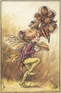 Illustration for the Burdock Fairy from Flower Fairies of the Winter.  A boy fairy runs from left to right, holding a spray of burdock in his left hand.    Author / Illustrator  Cicely Mary Barker
