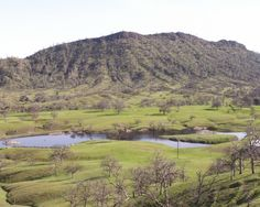 Ranches For Sale, Wild Boar, Quail, Black Bear, Hunters, Acre, Columbia, Golf Courses, Fishing