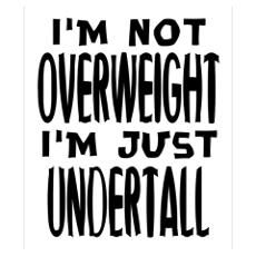 I'm not overweight. I'm just under tall. Fatt Smal Poster