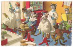 Mainzer Cats - barbershop..............lbxxx.