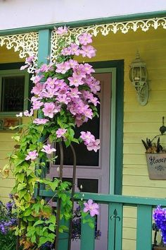 flowersgardenlove:  Sweet Porch Clematis Beautiful gorgeous pretty flowers