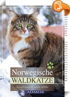 Norwegische Waldkatze    ::  Die Norwegische Waldkatze ist eine kleine Version des Luchses mit liebevollem Charakter und einem unvergleichlichem Wesen. Sie lebt auch heute noch frei in den Wäldern und Gebirgen Skandinaviens. Damit gehört sie zu einer der wenigen Naturrassen unter den Rassekatzen dieser Welt. Wie wünscht man sich das Aussehen der Norwegischen Waldkatze? Was zeichnet ihren Charakter aus? Wie ist ihre Entwicklung vom Kitten über die ausgewachsene Katze bis zum Senior zu b...